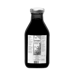 SALUS Haus Floradix  Plantain, Liquid herbal formula