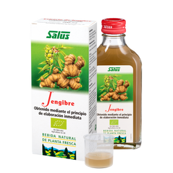 Schoenenberger Pure fresh plant juice Ginger