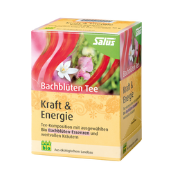 SALUS Haus Bach flowers tea Power & Energy