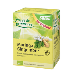 SALUS Haus Power of nature Moringa - Ginger
