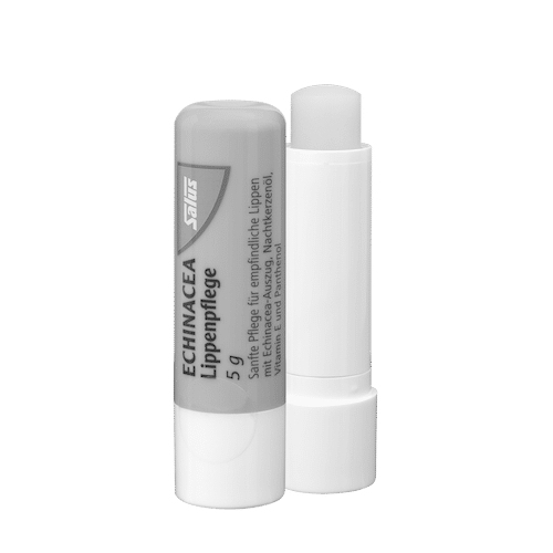 SALUS Haus Echinacea Lip Care Stick